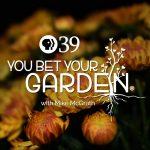 You Bet Your Garden podcast logo